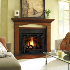 6000 C Series Direct Vent Gas Fireplace