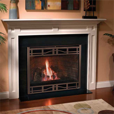 Heatilator NOVUS Direct Vent or B-Vent Gas Fireplace